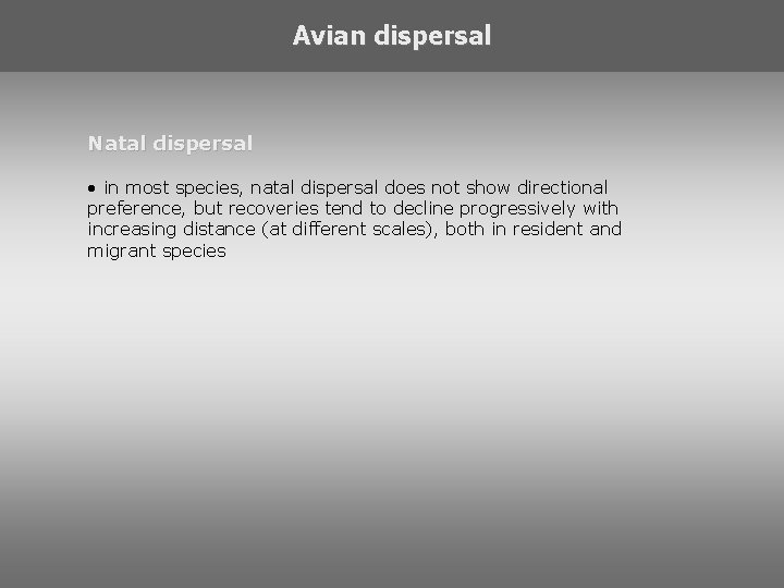 Avian dispersal Natal dispersal • in most species, natal dispersal does not show directional