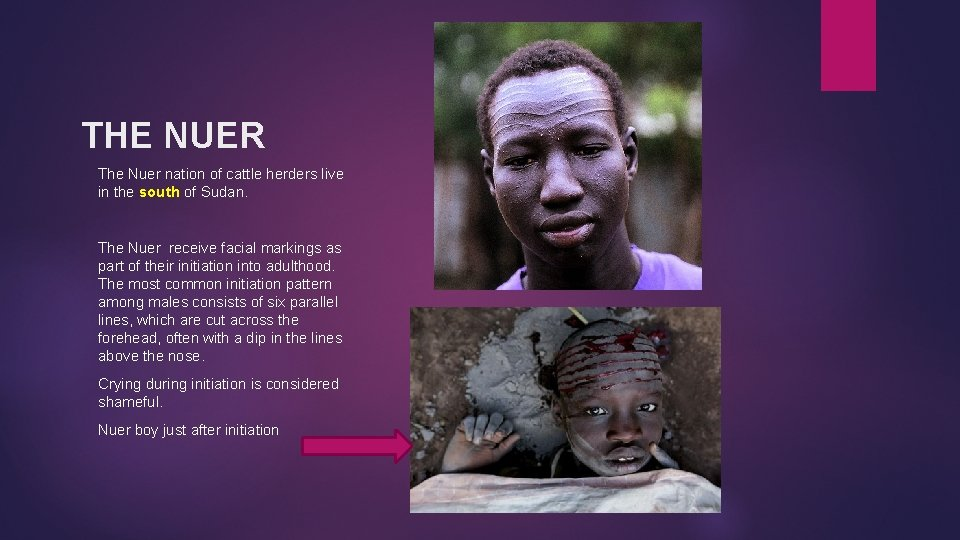 THE NUER The Nuer nation of cattle herders live in the south of Sudan.