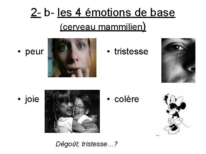 2 - b- les 4 émotions de base (cerveau mammilien) • peur • tristesse