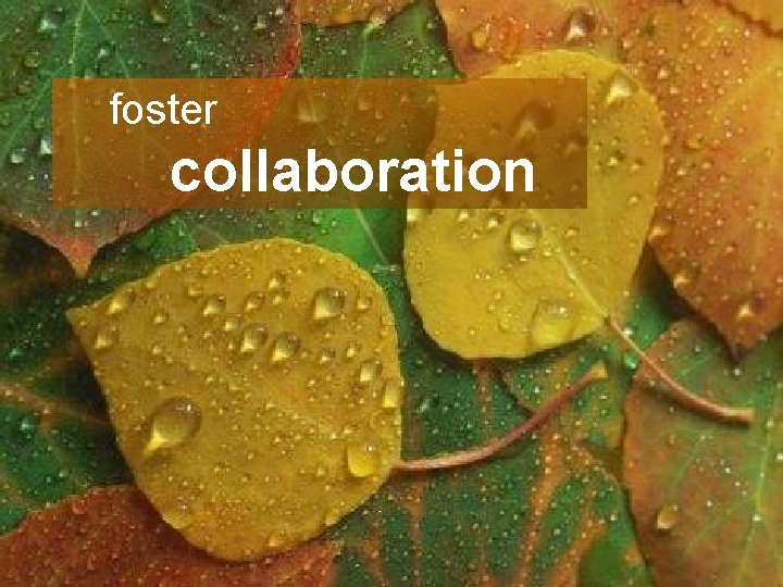 Unleashing Innovation foster collaboration Collaboration Process