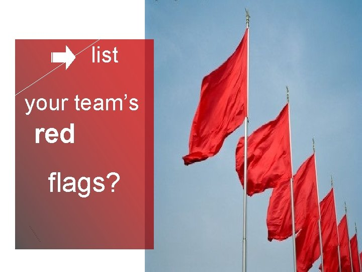 list your team's red flags?