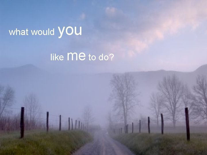what would you like me to do?
