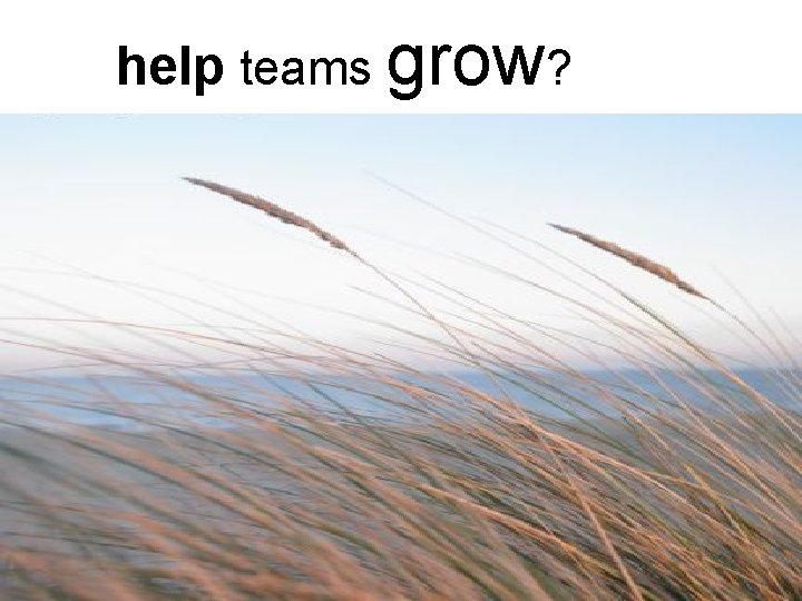 help teams grow? § Using the cube concept, how do you recognize when you