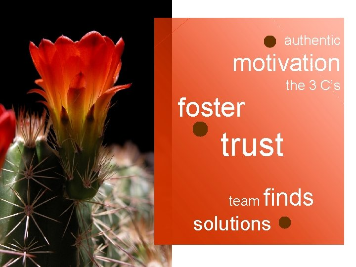 authentic motivation the 3 C's foster trust team finds solutions