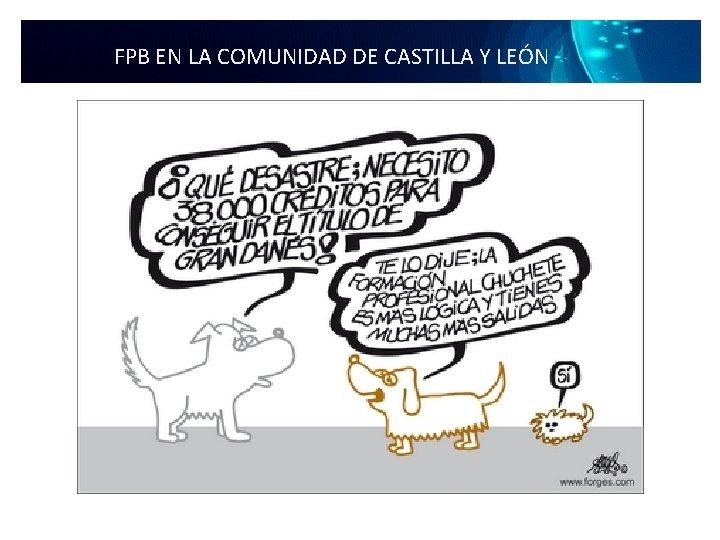 FPB EN LA COMUNIDAD DE CASTILLA Y LEÓN