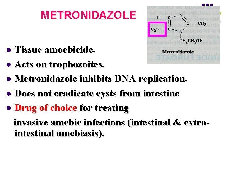 METRONIDAZOLE Tissue amoebicide. l Acts on trophozoites. l Metronidazole inhibits DNA replication. l Does