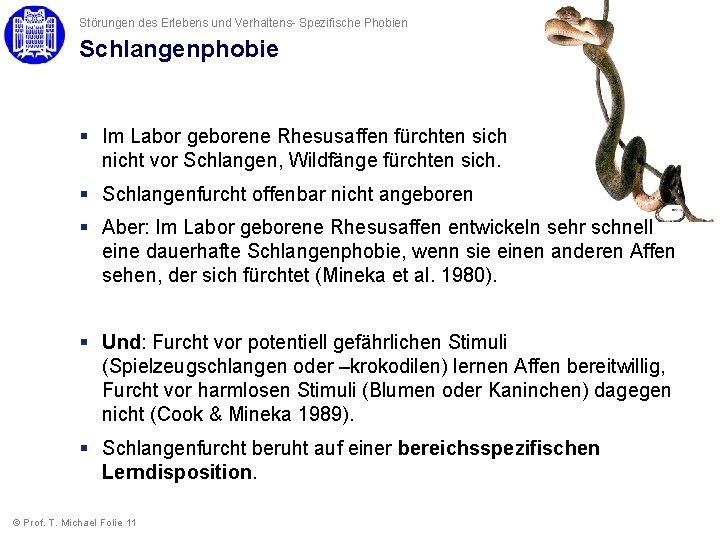 Störungen des Erlebens und Verhaltens- Spezifische Phobien Schlangenphobie § Im Labor geborene Rhesusaffen fürchten