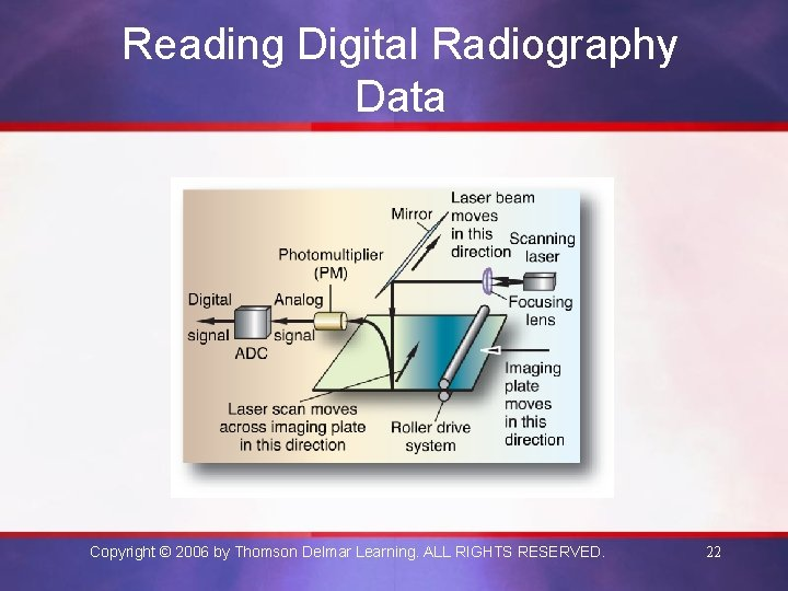 Reading Digital Radiography Data Copyright © 2006 by Thomson Delmar Learning. ALL RIGHTS RESERVED.