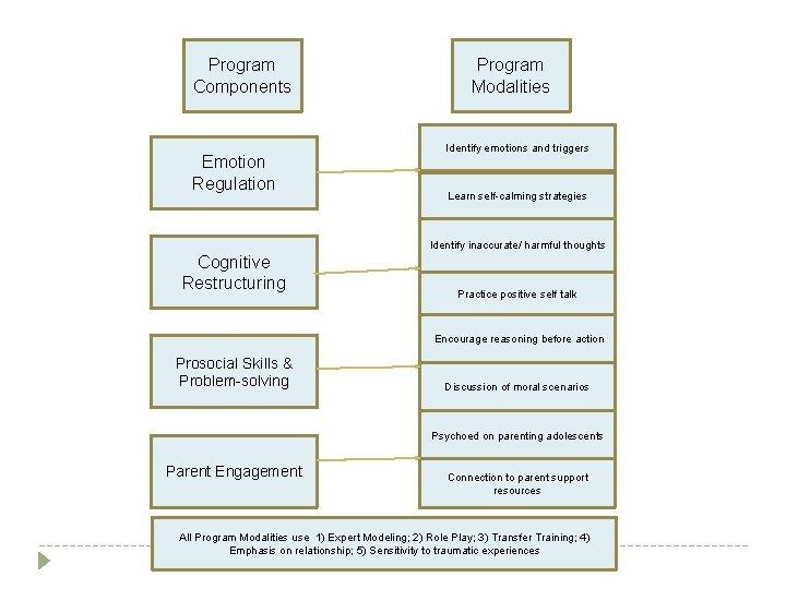 Program Components Emotion Regulation Program Modalities Identify emotions and triggers Learn self-calming strategies Identify