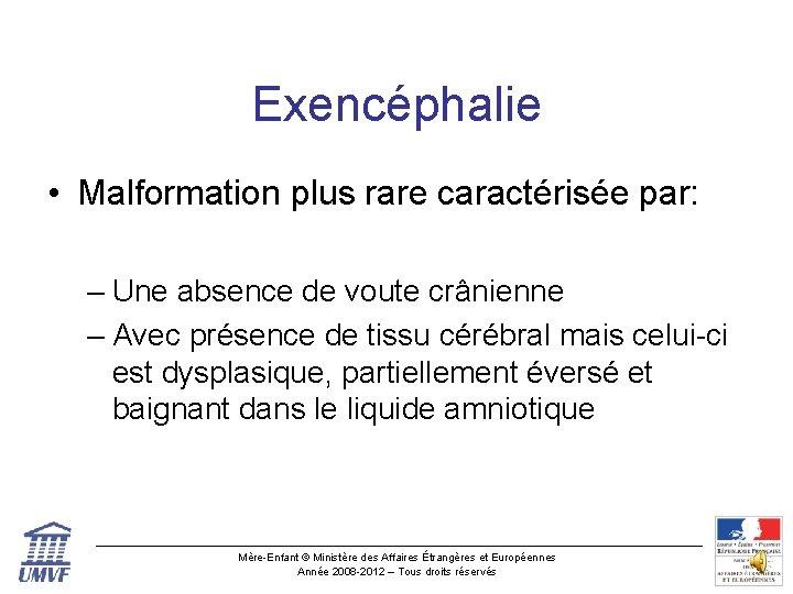 Exencéphalie • Malformation plus rare caractérisée par: – Une absence de voute crânienne –