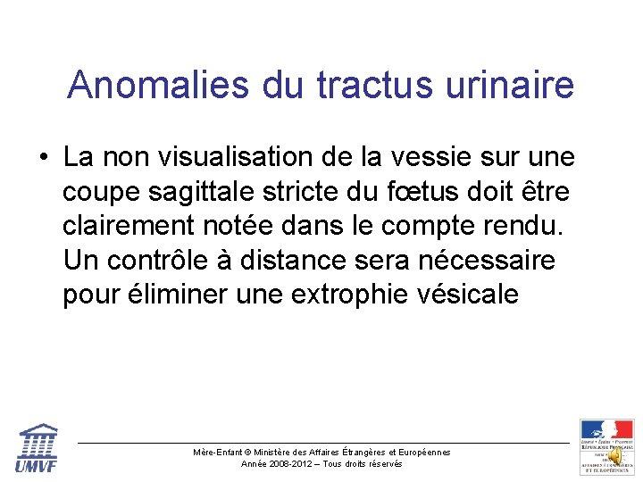 Anomalies du tractus urinaire • La non visualisation de la vessie sur une coupe