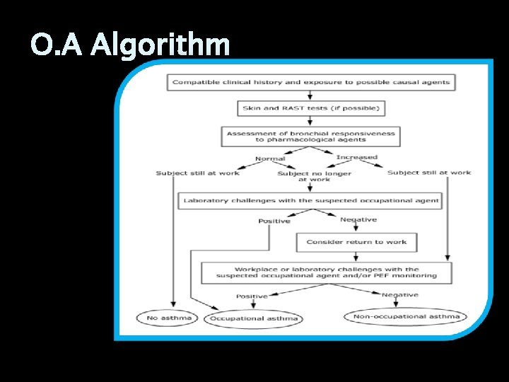 O. A Algorithm
