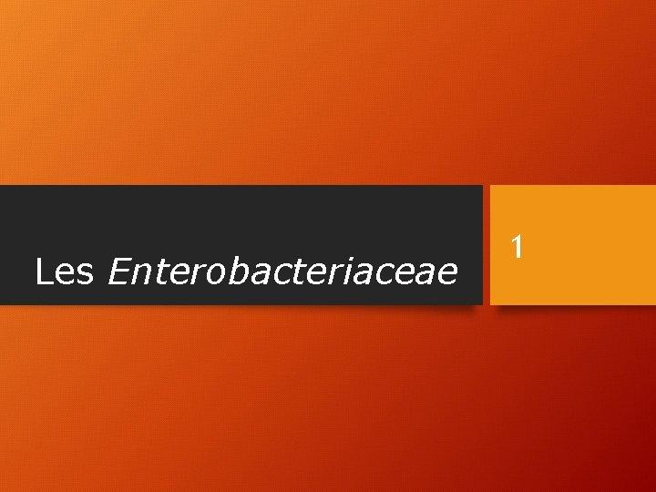 Les Enterobacteriaceae 1
