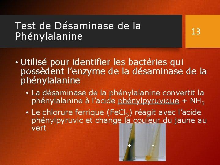 Test de Désaminase de la Phénylalanine 13 • Utilisé pour identifier les bactéries qui