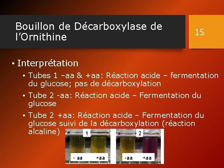 Bouillon de Décarboxylase de l'Ornithine 15 • Interprétation • Tubes 1 –aa & +aa: