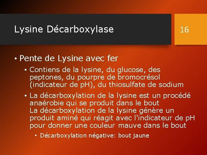 Lysine Décarboxylase 16 • Pente de Lysine avec fer • Contiens de la lysine,