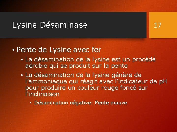 Lysine Désaminase 17 • Pente de Lysine avec fer • La désamination de la