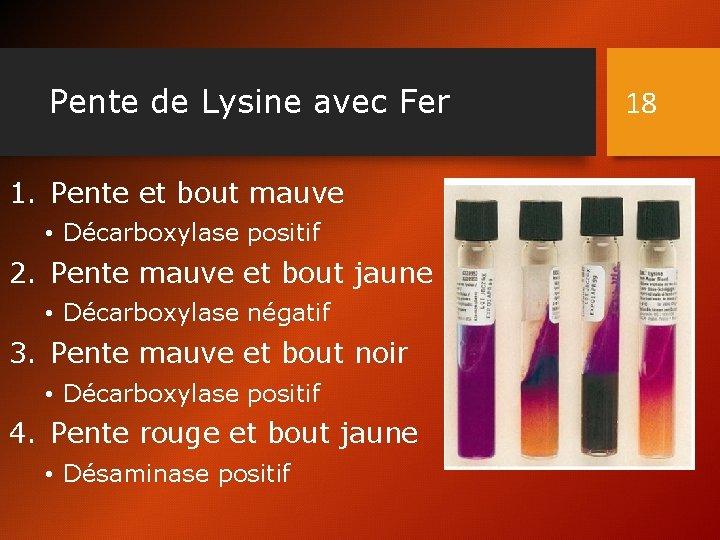 Pente de Lysine avec Fer 1. Pente et bout mauve • Décarboxylase positif 2.