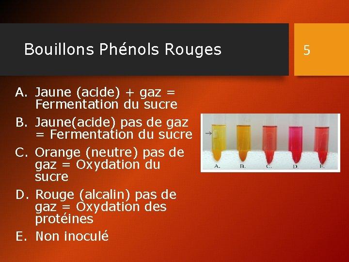 Bouillons Phénols Rouges A. Jaune (acide) + gaz = Fermentation du sucre B. Jaune(acide)