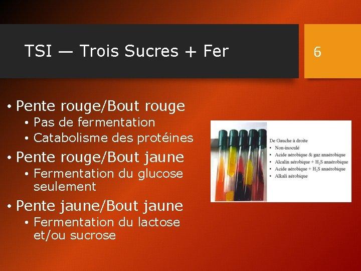 TSI — Trois Sucres + Fer • Pente rouge/Bout rouge • Pas de fermentation