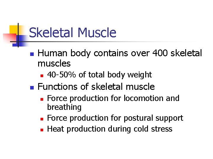 Skeletal Muscle n Human body contains over 400 skeletal muscles n n 40 -50%