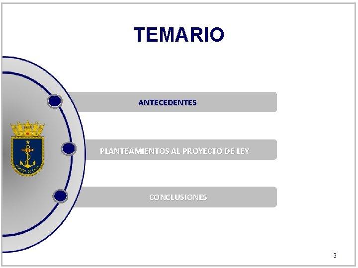 TEMARIO ANTECEDENTES PLANTEAMIENTOS AL PROYECTO DE LEY CONCLUSIONES 3