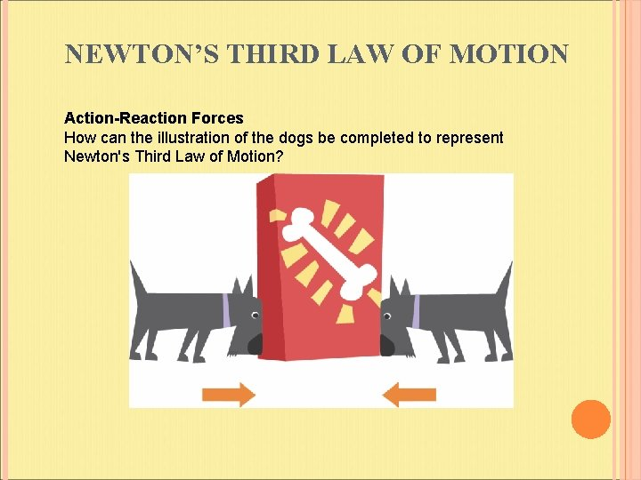 NEWTON'S THIRD LAW OF MOTION Action-Reaction Forces How can the illustration of the dogs