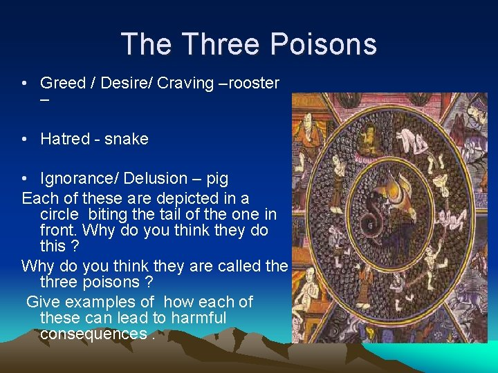 The Three Poisons • Greed / Desire/ Craving –rooster – • Hatred - snake