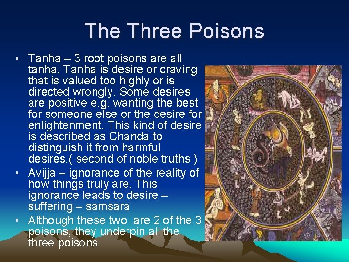 The Three Poisons • Tanha – 3 root poisons are all tanha. Tanha is