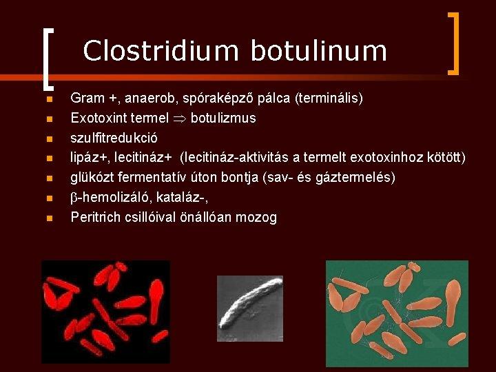 botulizmus és látás