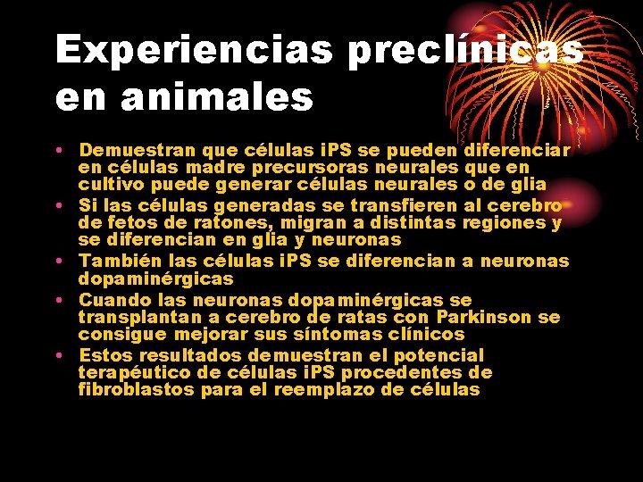 Experiencias preclínicas en animales • Demuestran que células i. PS se pueden diferenciar en