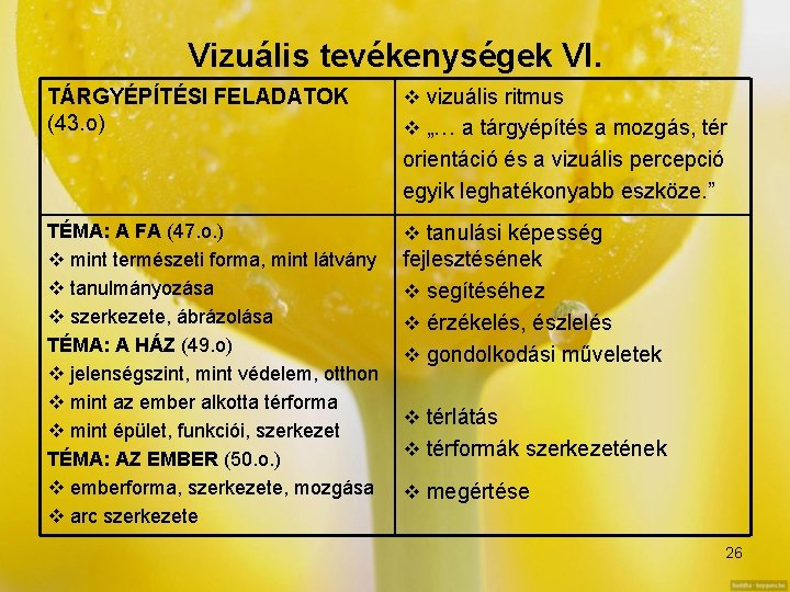 a vizuális érzékelés funkciói