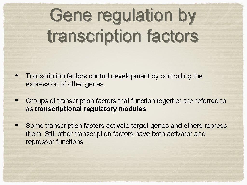 Gene regulation by transcription factors • Transcription factors control development by controlling the expression