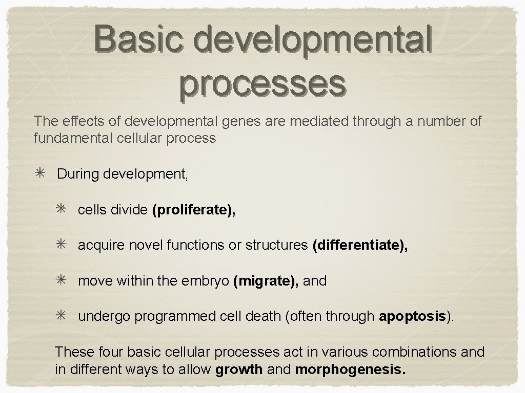 Basic developmental processes The effects of developmental genes are mediated through a number of