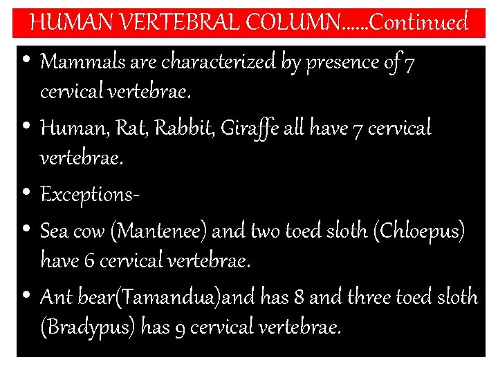 HUMAN VERTEBRAL COLUMN……Continued • Mammals are characterized by presence of 7 cervical vertebrae. •