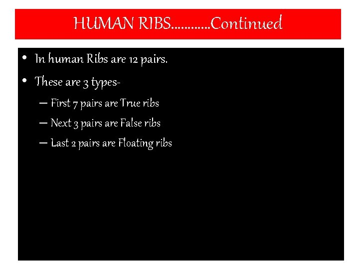 HUMAN RIBS…………Continued • In human Ribs are 12 pairs. • These are 3 types–