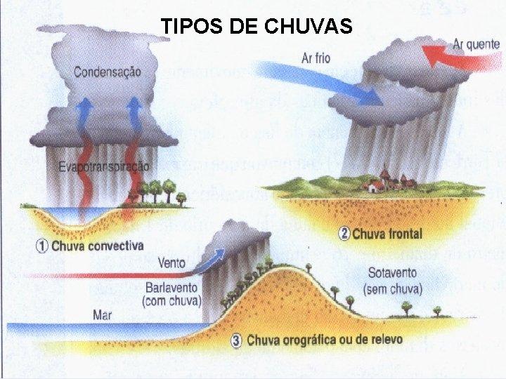 TIPOS DE CHUVAS