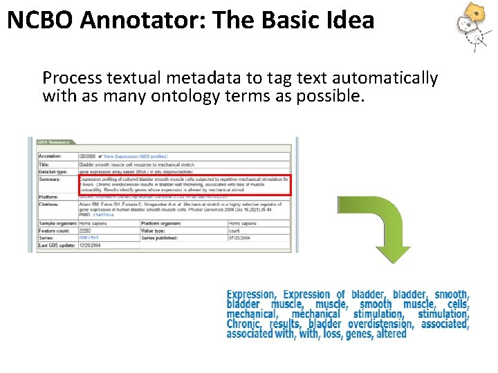 NCBO Annotator: The Basic Idea Process textual metadata to tag text automatically with as