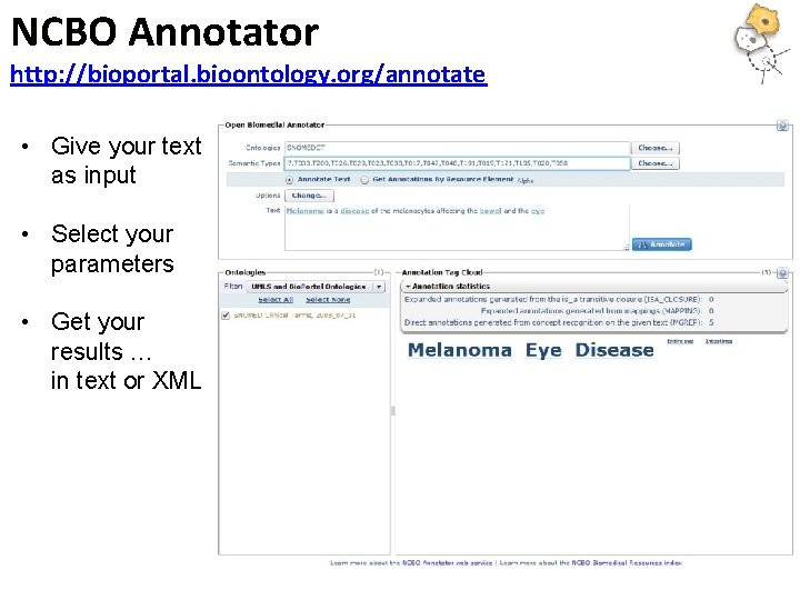 NCBO Annotator http: //bioportal. bioontology. org/annotate • Give your text as input • Select