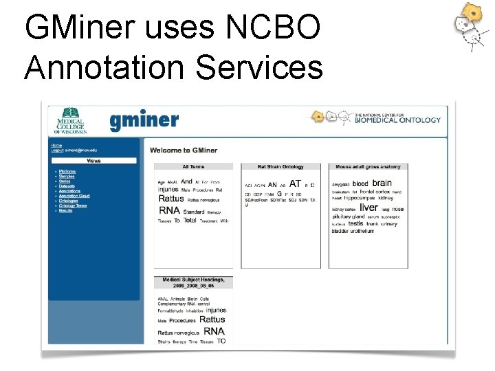 GMiner uses NCBO Annotation Services
