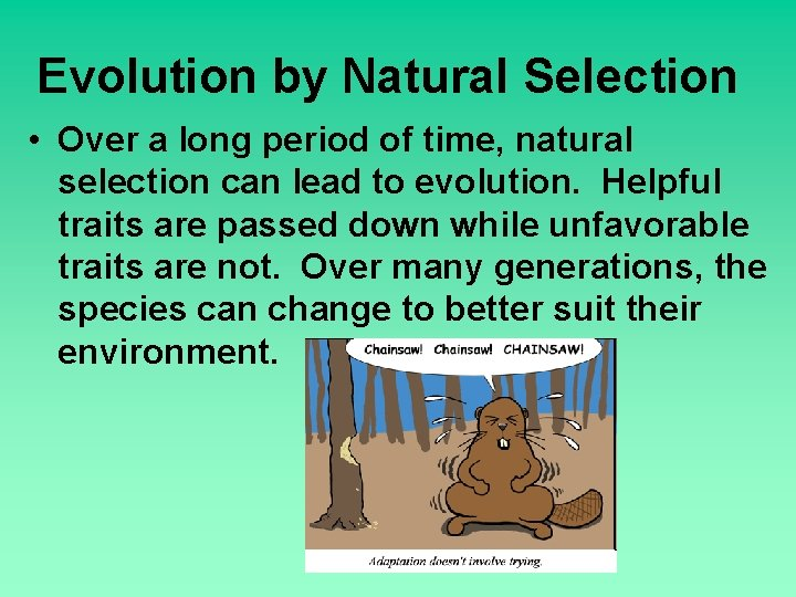 Evolution by Natural Selection • Over a long period of time, natural selection can