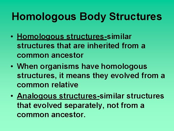 Homologous Body Structures • Homologous structures-similar structures that are inherited from a common ancestor