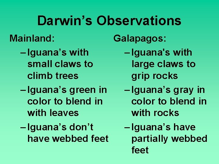 Darwin's Observations Mainland: Galapagos: – Iguana's with – Iguana's with small claws to large