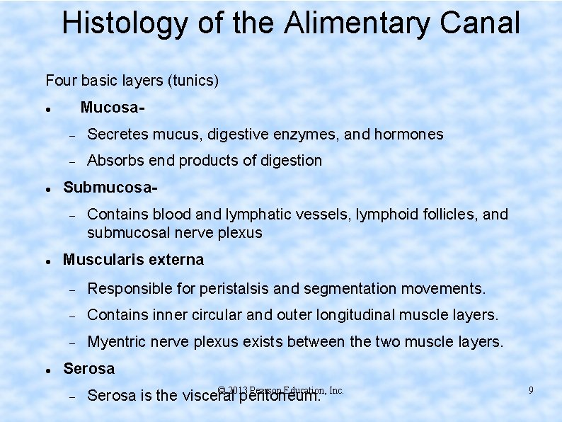 Histology of the Alimentary Canal Four basic layers (tunics) Mucosa Secretes mucus, digestive enzymes,