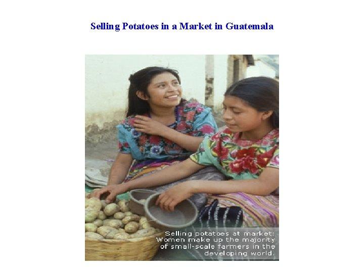 Selling Potatoes in a Market in Guatemala