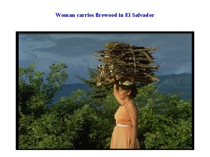 Woman carries firewood in El Salvador