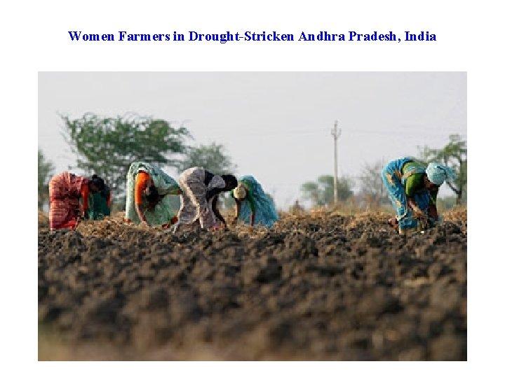 Women Farmers in Drought-Stricken Andhra Pradesh, India