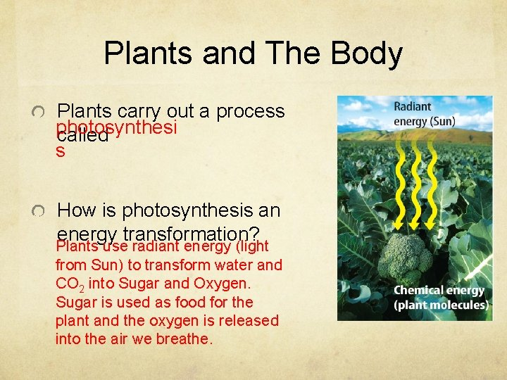 Plants and The Body Plants carry out a process photosynthesi called s How is