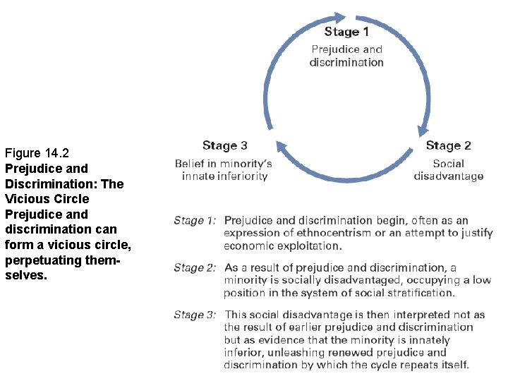 Figure 14. 2 Prejudice and Discrimination: The Vicious Circle Prejudice and discrimination can form