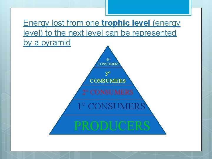 Energy lost from one trophic level (energy level) to the next level can be